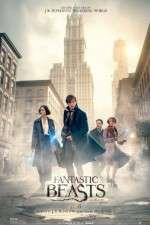 Watch Fantastic Beasts and Where to Find Them Online Projectfreetv