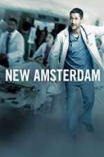 new amsterdam tv poster